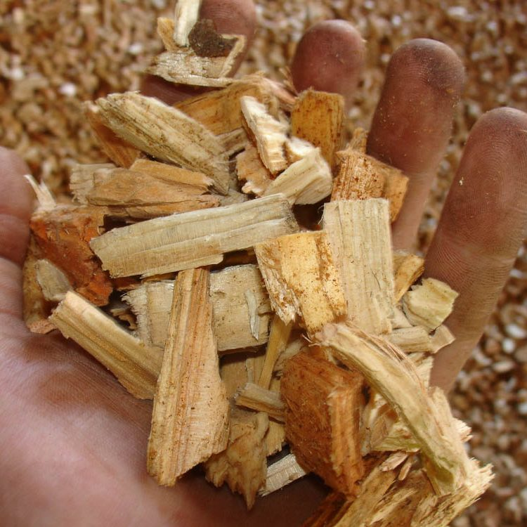 Firewood and woodchips